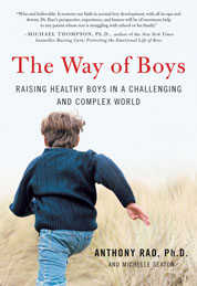 Cover The Way of Boys oleh