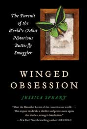 Winged Obsession by Cover