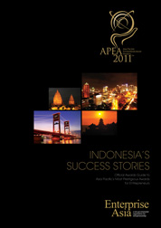 Cover Indonesia's Success Story oleh