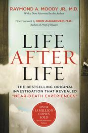 Life After Life by Cover