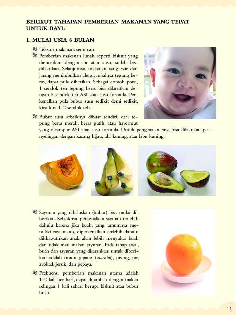 100 Resep Bubur Bayi Usia 6 12 Bulan Book By Hindah Muaris