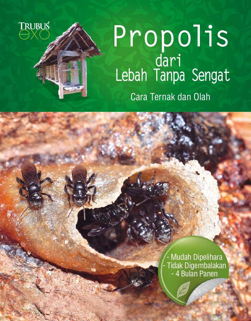 Propolis - Dari Lebah Tanpa Sengat