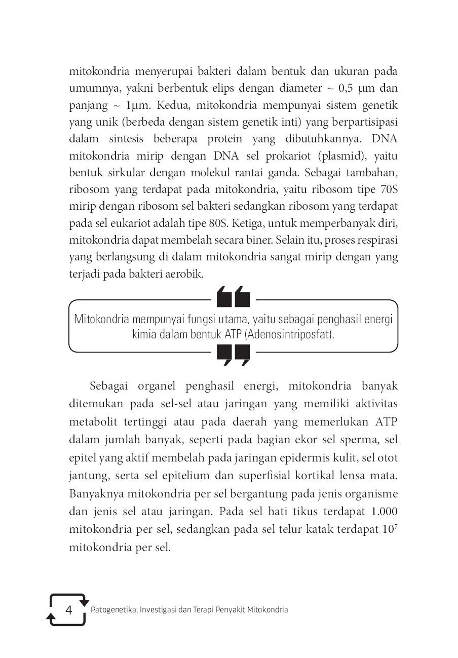 Jual Buku Patogenetika Investigasi Dan Terapi Penyakit Mitokondria Oleh Iman Permana Maksum Gramedia Digital Indonesia