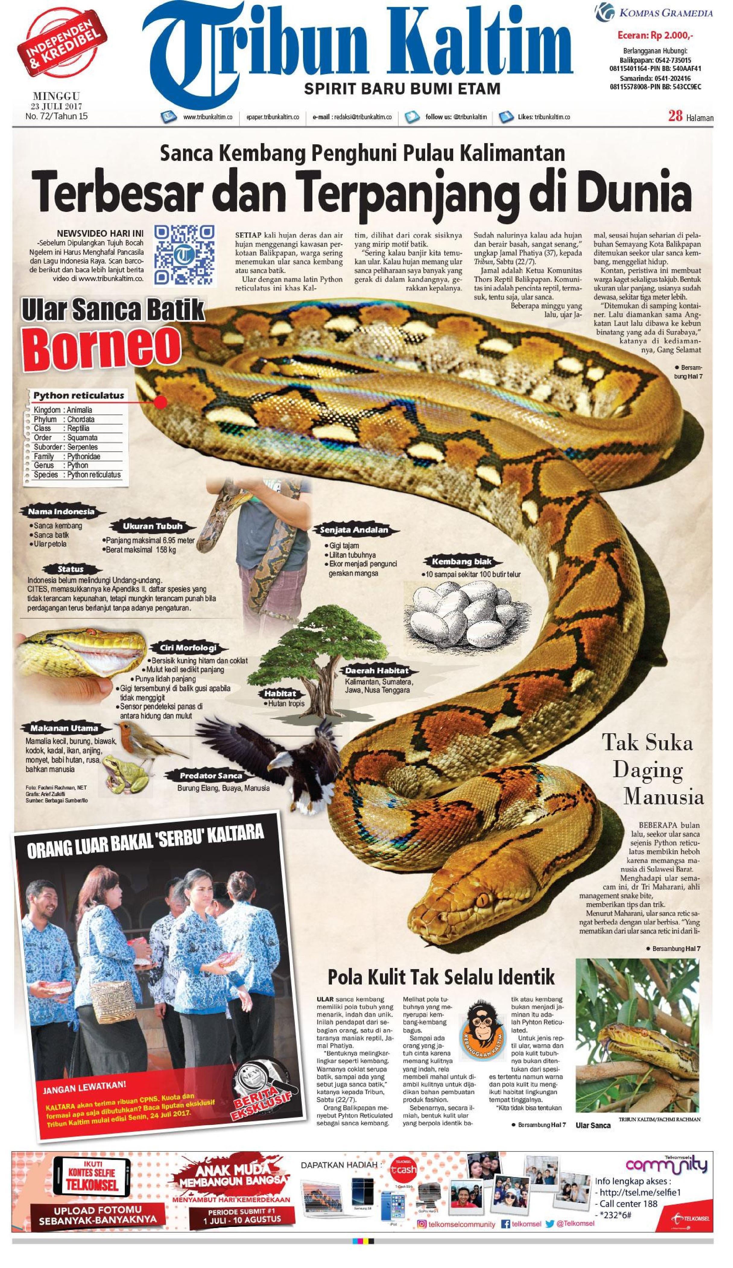 Jual Koran Tribun Kaltim 23 Juli 2017 - Gramedia Digital