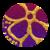 Varients   purple