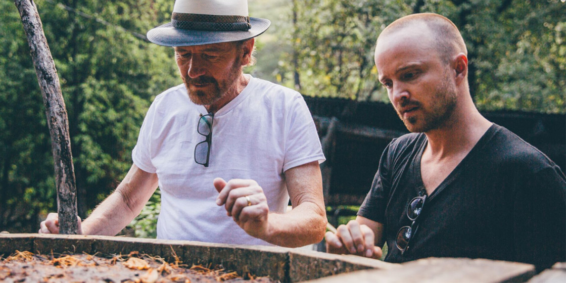 Breaking Bad's Bryan Cranston and Aaron Paul reveal secret Mezcal project