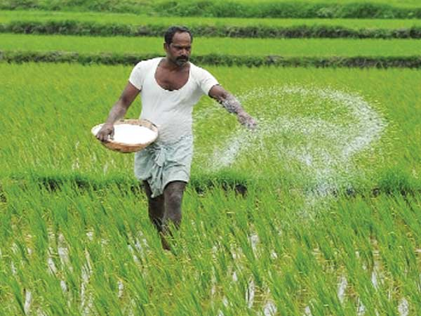 Govt may hold back Q4 fertiliser subsidy to meet fiscal deficit goal