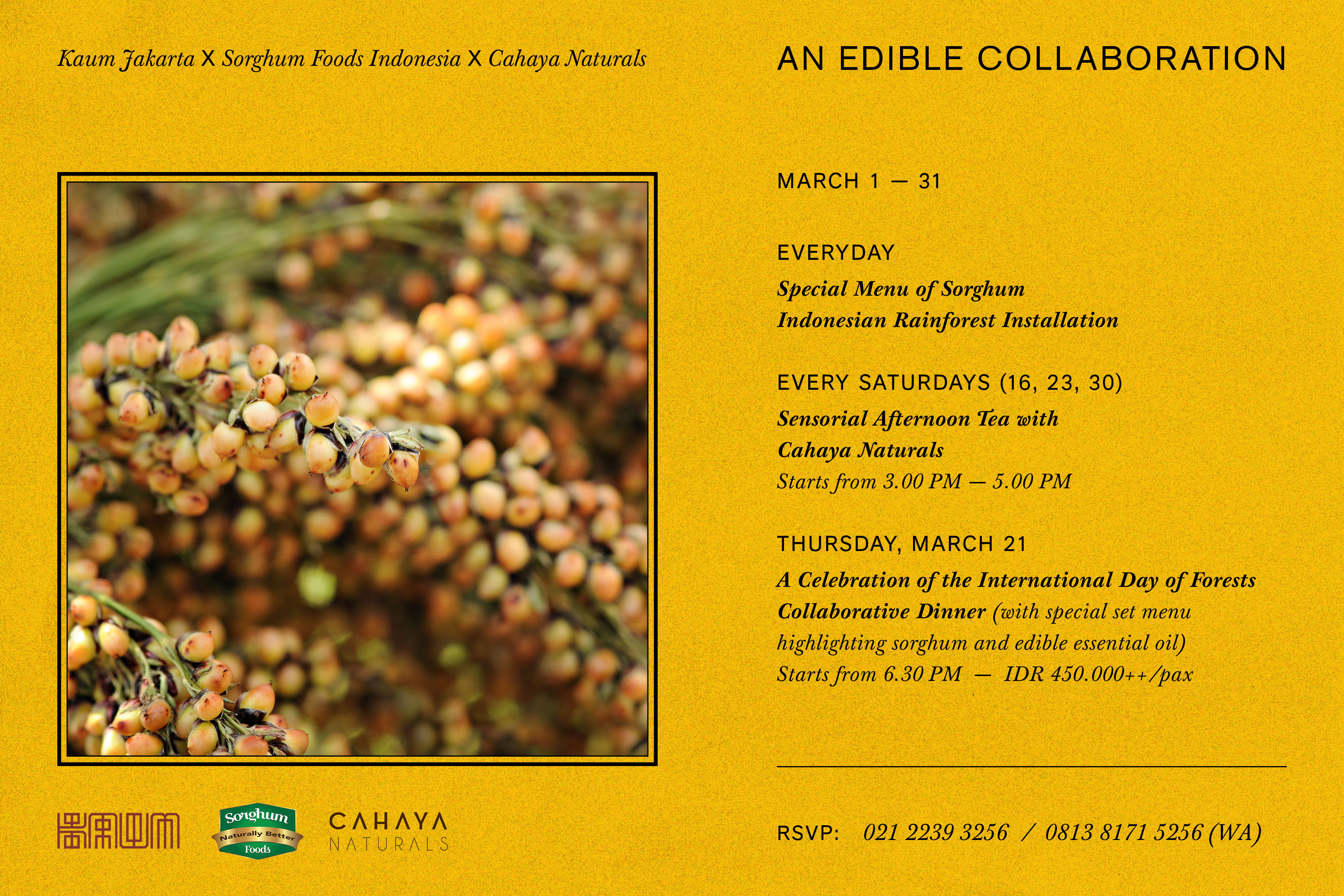 An Edible Collaboration: Kaum Jakarta, Sorghum Foods Indonesia, and Cahaya Naturals