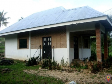 House And Lot In Sa...