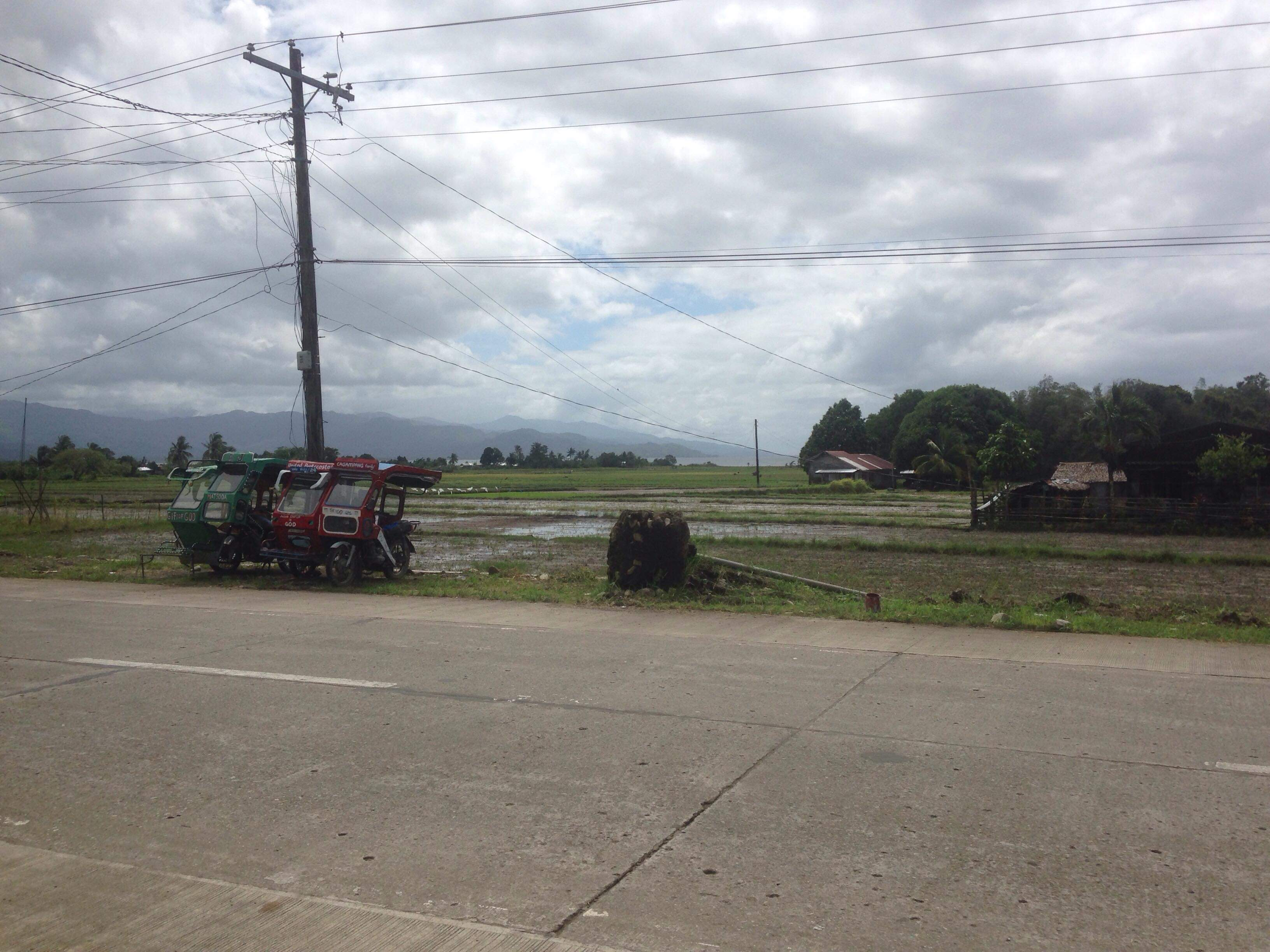 agricultural farm land for only p185 sqm