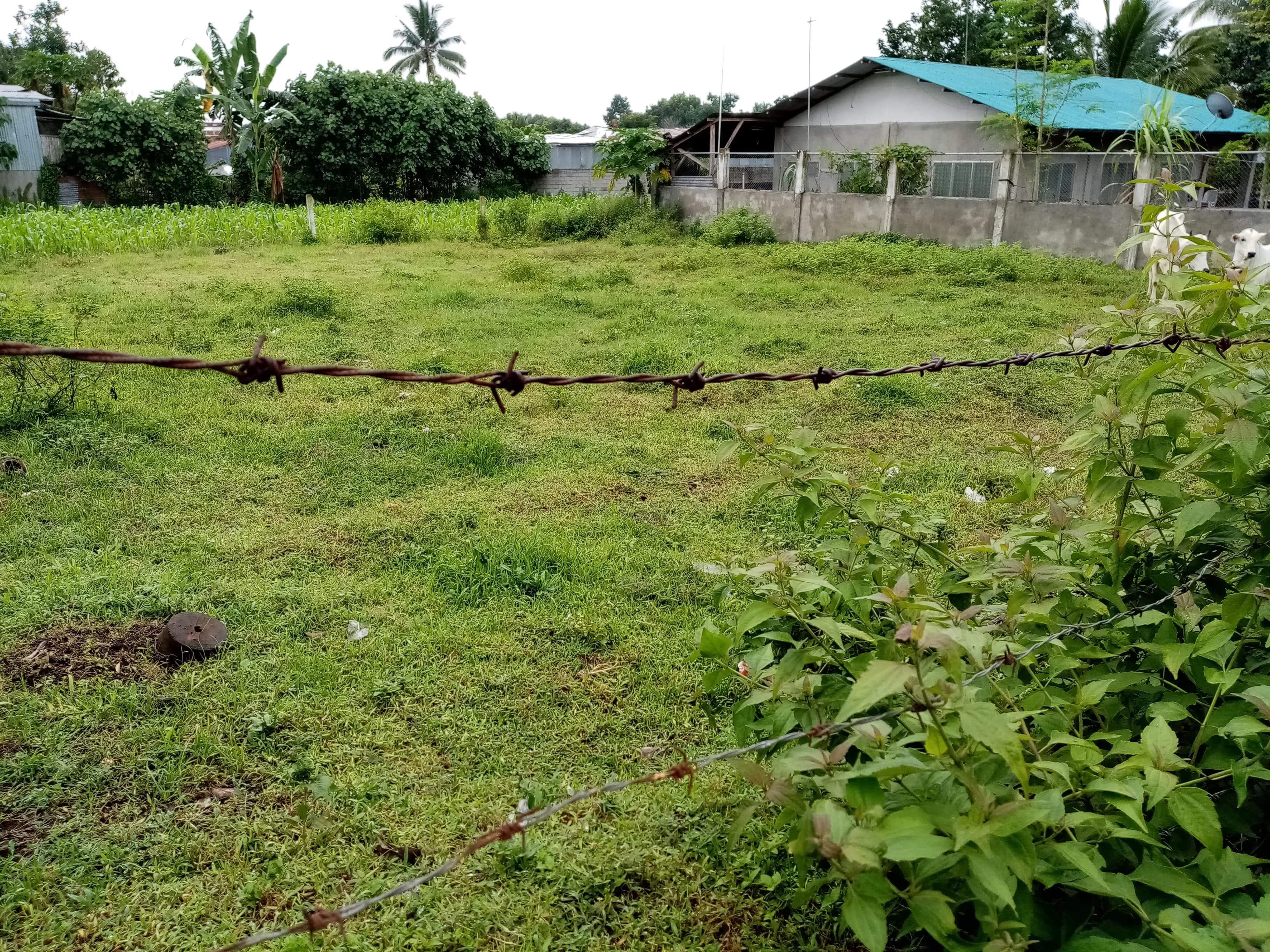 agricultural that could be converted as residential lot,within booming location of polomolok.