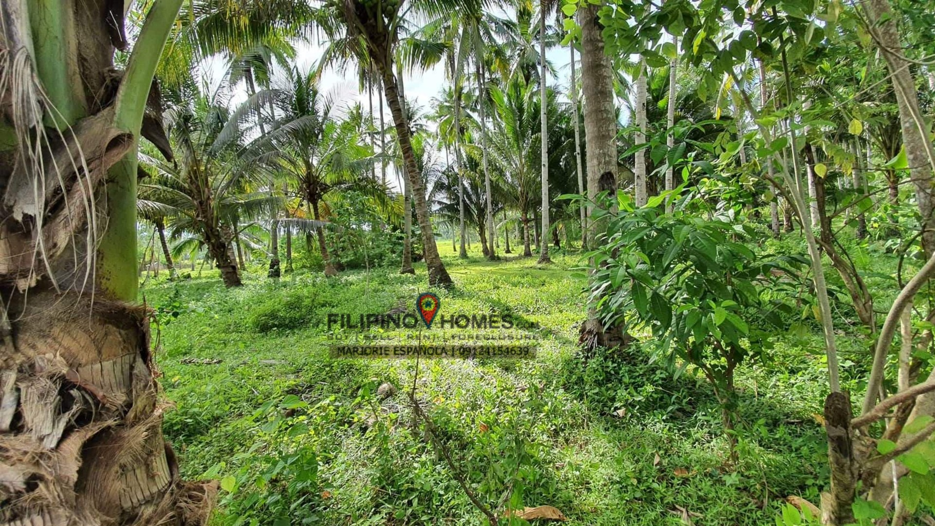 21 hectares beach for sale at cablalan, glan