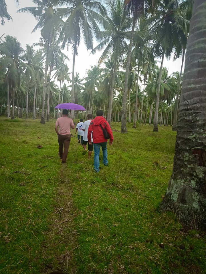 8 hectares agricultural land for sale baluntay, alabel, sarangani prov.