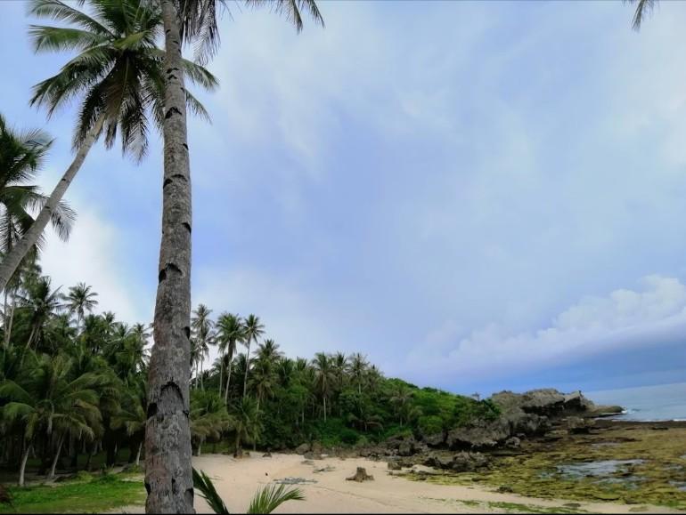 beach lot for sale in baybay, burgos, siargao islands