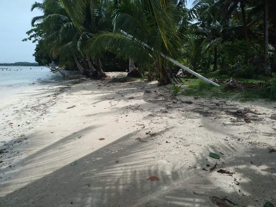 300 sq.m beach lot for sale in gen. luna, siargao islands
