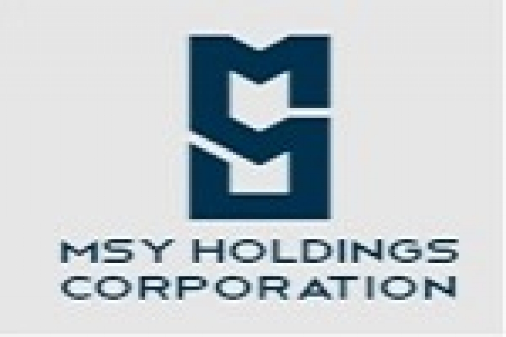 MSY Holdings Corporation