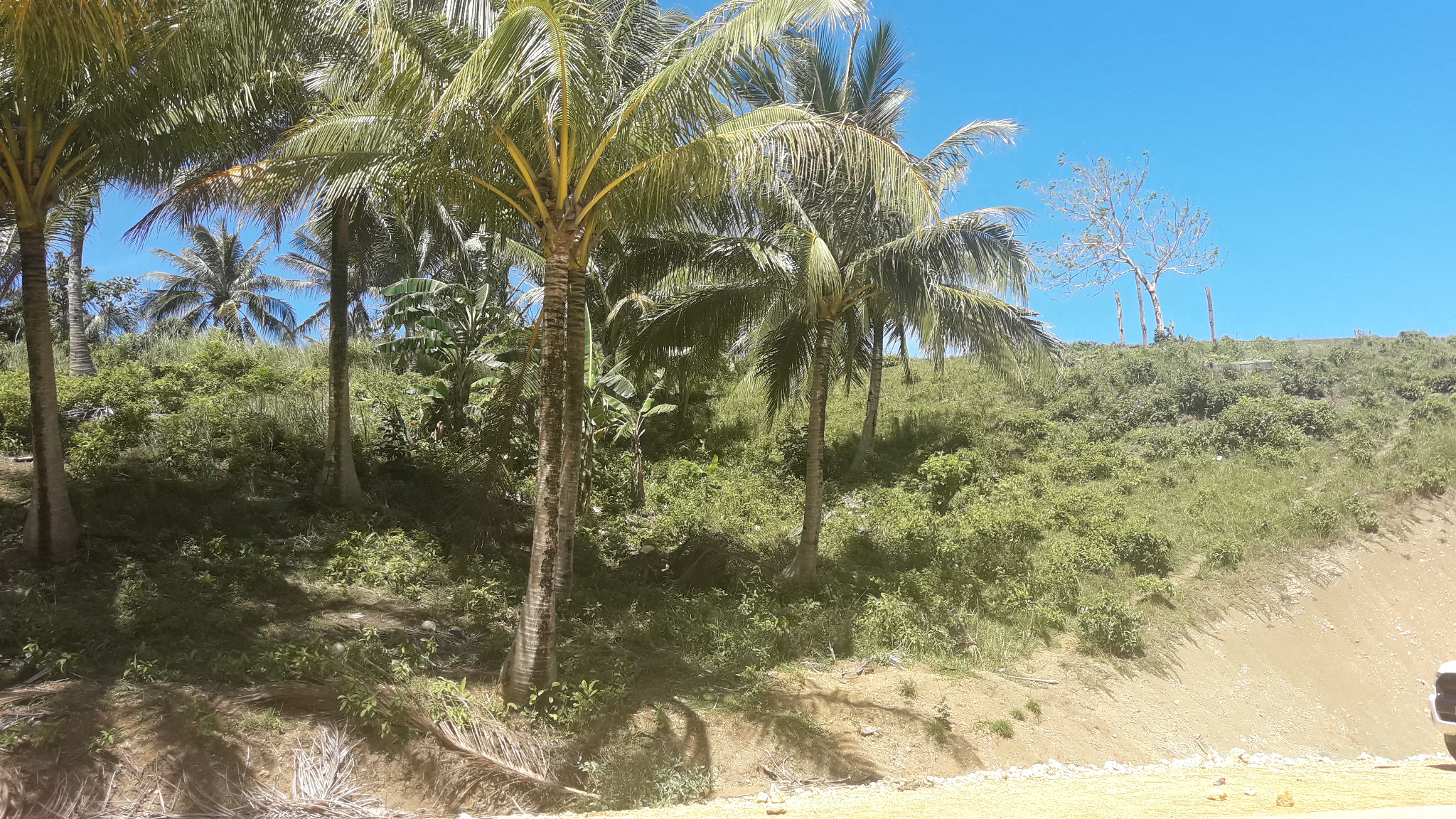 for sale overlooking lot w pacific ocean view