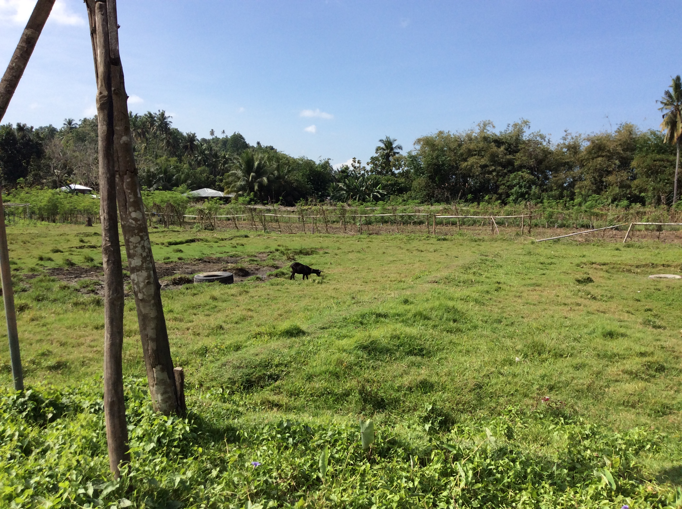 agricultural lots for sale in iligan city