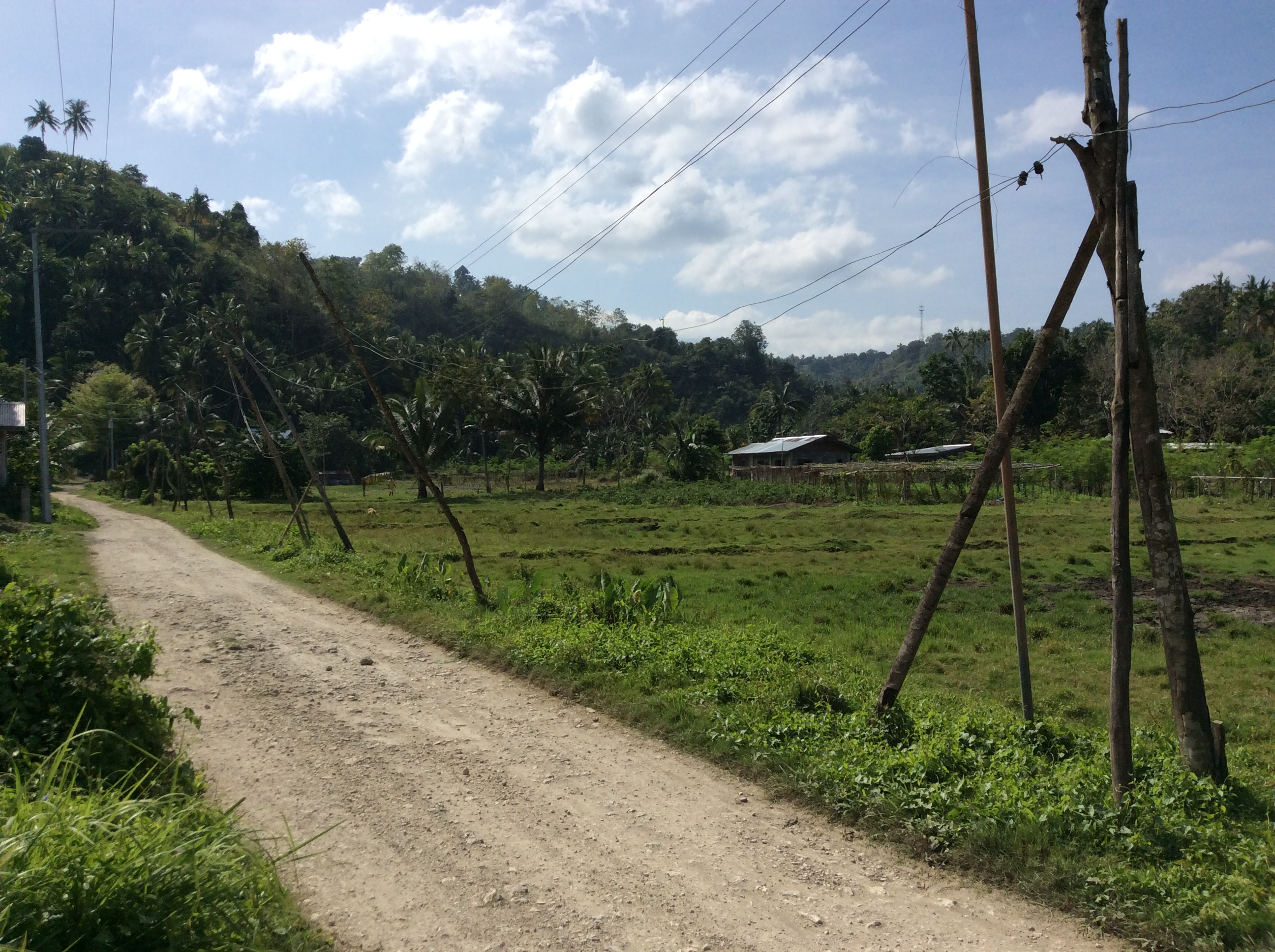 agricultural lots for sale in iligan city near city proper only