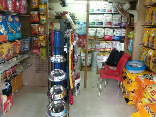 we are the best pet shoppee in pune - by Pets Glorious, Pune