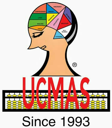 Wits Academy - logo