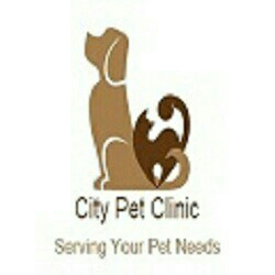 CITY PET CLINIC - logo