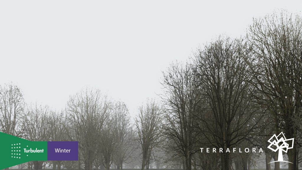 TF Winter 02 1024×576