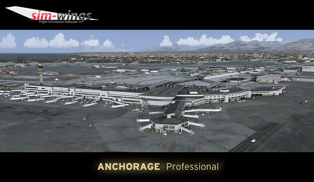 Anchorage Professional 15