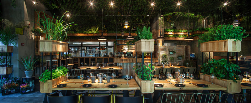 contemporary-restaurant_090915_03