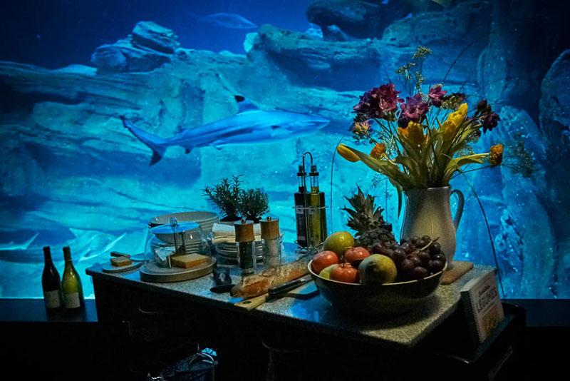 underwater-bedroom_290316_06