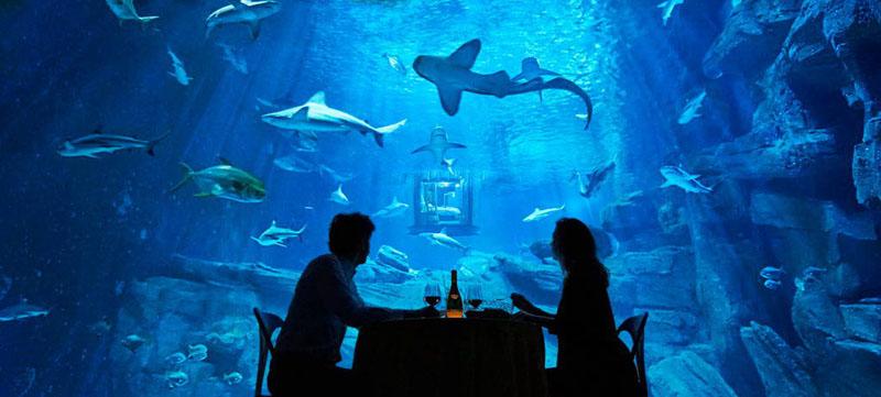 underwater-bedroom_290316_07
