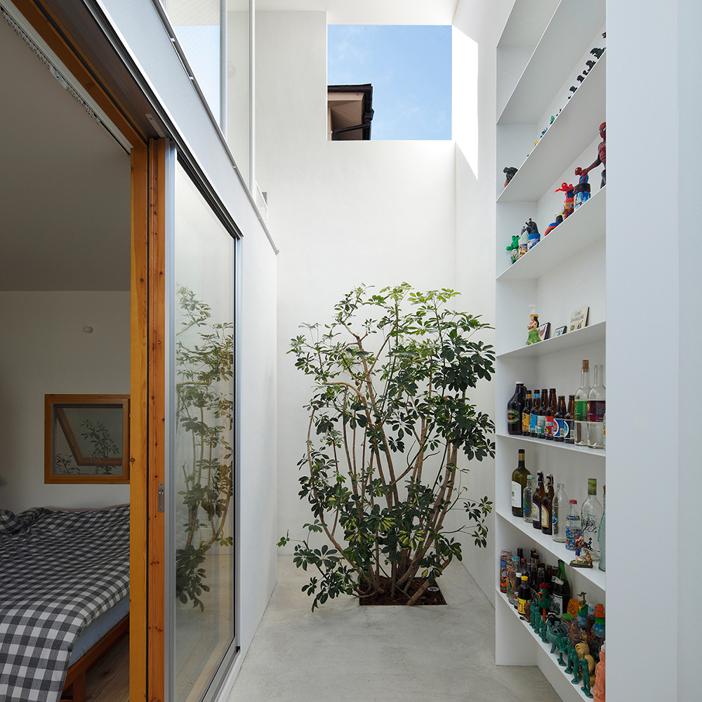inside-out-house-architecture-for-cats_dezeen_1704_col_1
