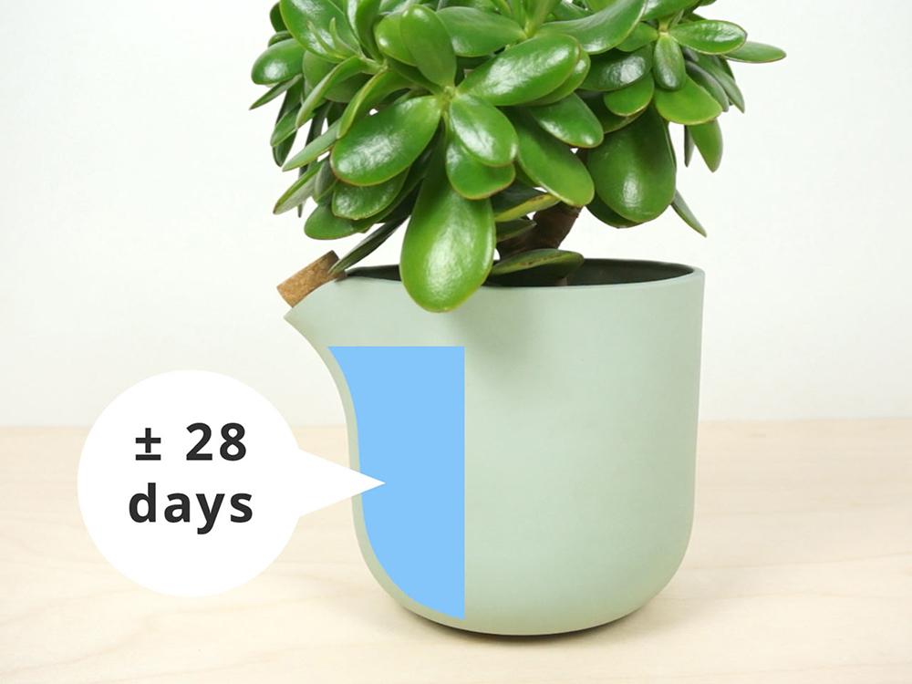 studio-lorier-self-watering-flowerpot-natural-balance-1a