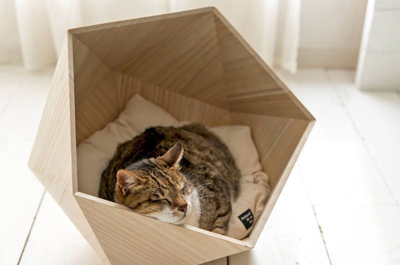 modern-wooden-pet-beds-cats-dogs-200217-342-03