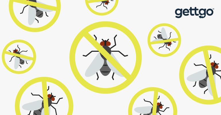 วิธีไล่แมลงวัน