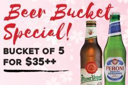 Bucket of 5 Beer