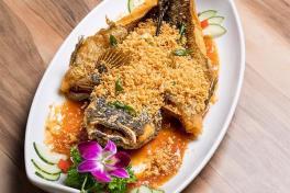 鱼 CNY FISH