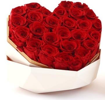 Preserved Red Rose in White Heart Box Big