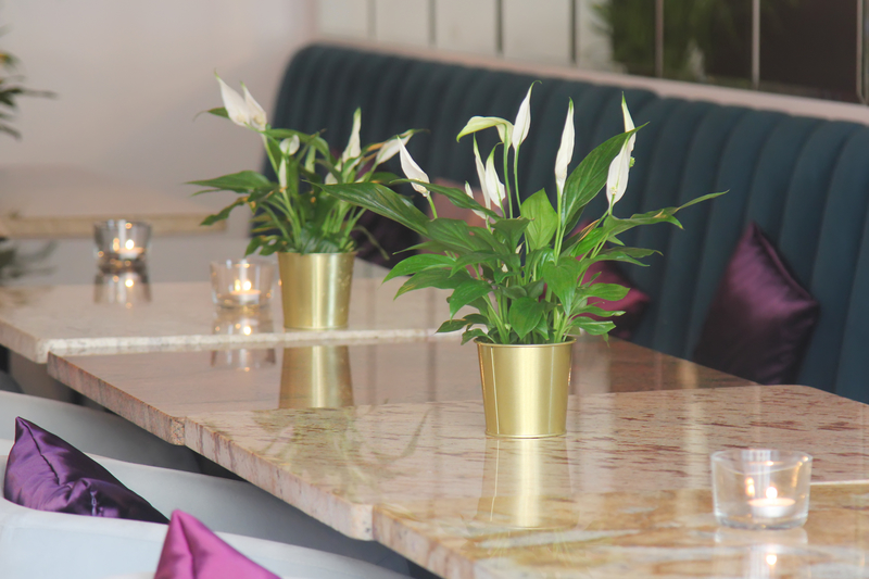 Subscription Floral for Hotels