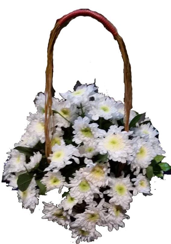 White Sympathy Basket