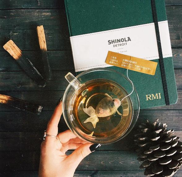 goldfish tea bag