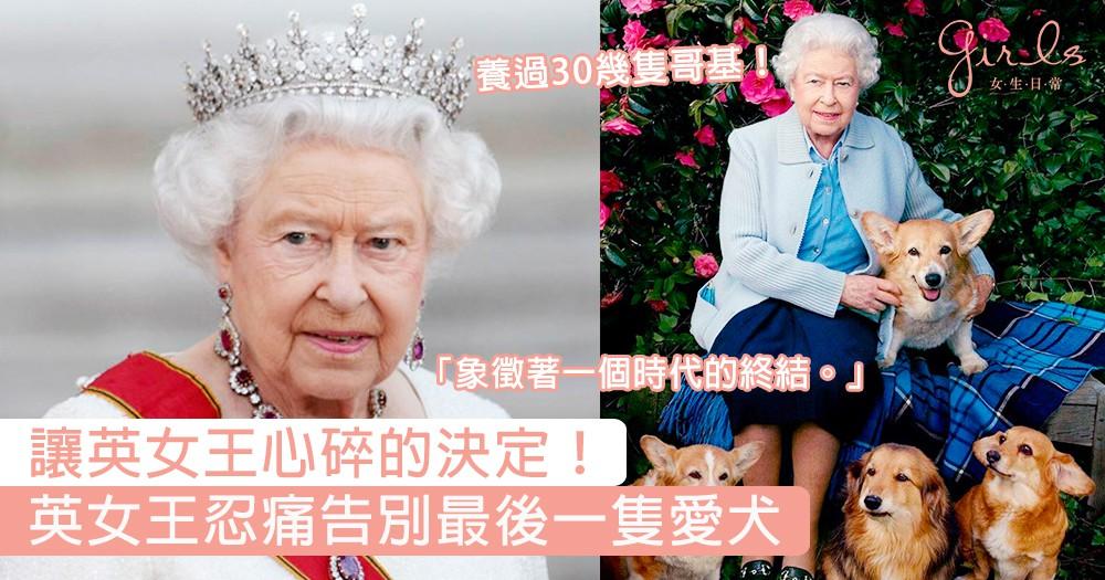 讓英女王心碎的決定!英女王忍痛告別最後一隻哥基愛犬,曾經養過30隻哥基、視狗如命的女王!