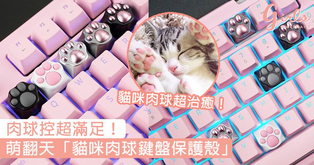 肉球控超-滿-足!萌翻天「貓咪肉球鍵盤保護殼」,每次打字都可以同貓咪擊掌~