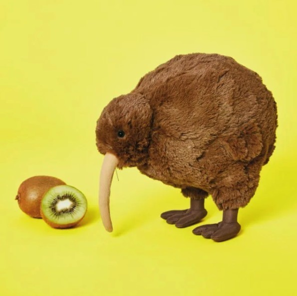 奇異鳥(Kiwi bird)