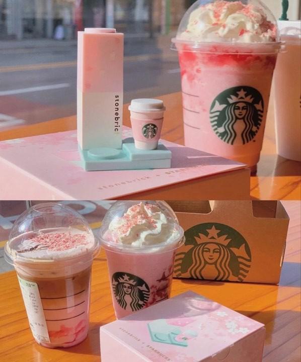 韓國Starbucks送Stone Brick櫻花唇膏