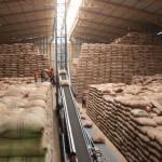 columbia coffee warehouse