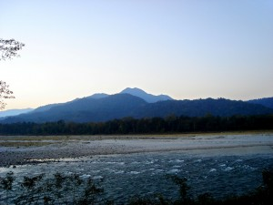 Manas Wildlife Sanctuary
