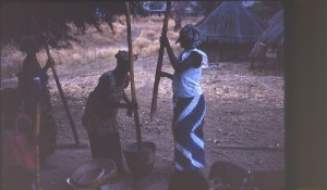 Bassari Country: Bassari, Fula and Bedik Cultural Landscapes