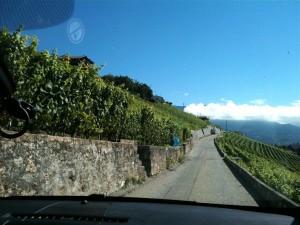 Lavaux, Vineyard Terraces