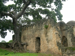 Ruins of Kilwa Kisiwani and Ruins of Songo Mnara